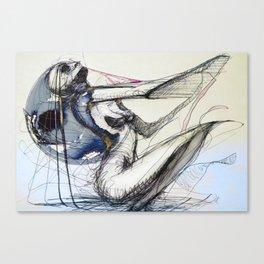 nine hundred Canvas Print