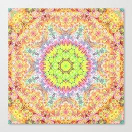 Deep Thought Mandala Canvas Print