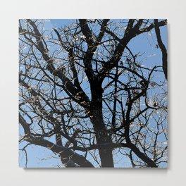 icy tree Metal Print