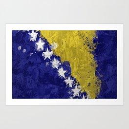 Bosnian Flag Art Print