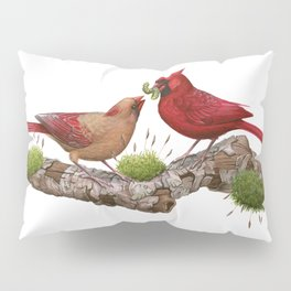 Northern  Cardinals Pillow Sham