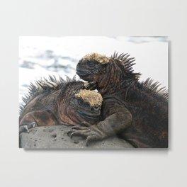 Iguana Love Metal Print