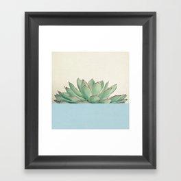 Succulent Dip III Framed Art Print