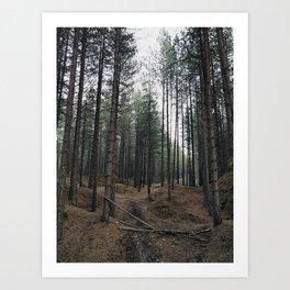 muddy path Art Print