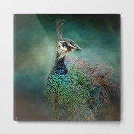 Portrait of a Peafowl - Wildlife Metal Print