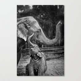 Happy Canvas Print