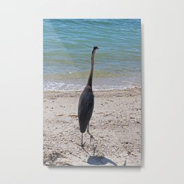 Restless Summer Metal Print
