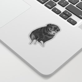 Sweet Black Pug Sticker