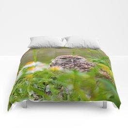Owl in Flowers Comforters