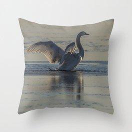 Swan at Sunset Throw Pillow