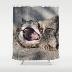 CAT - YAWNING - PHOTOGRAPHY - ANIMALS - CATS Shower Curtain