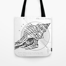 Geometry of a Charonia tritonis Tote Bag