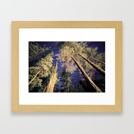 Startrails Framed Art Print