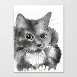 A Russian Grey Cat Canvas Print