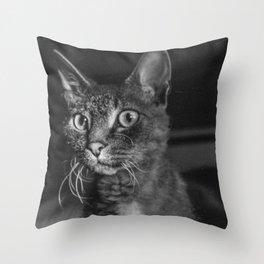 Bald cat Throw Pillow