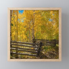 Aspen Autumn Color I - Southern Utah Framed Mini Art Print