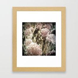 Bee on Chive Framed Art Print