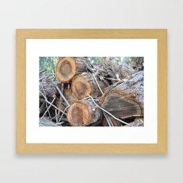 Woodsland Framed Art Print