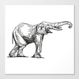 Elephant Elefante Canvas Print