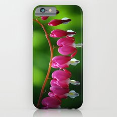 Bleeding Hearts iPhone 6 Slim Case