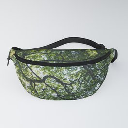 Canopy Fanny Pack