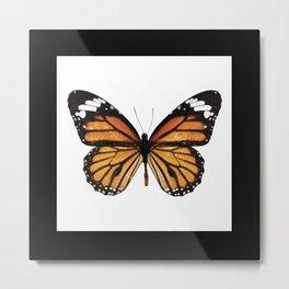 Tradicional Butterfly Metal Print
