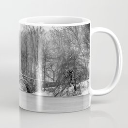 Stone Bridge at Clove Lakes Staten Island Coffee Mug