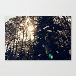 Peek a Boo Sun Canvas Print