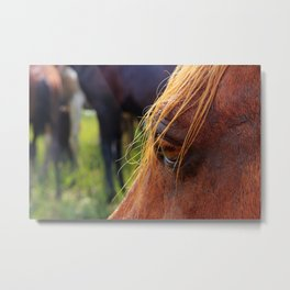 Strong Story Metal Print
