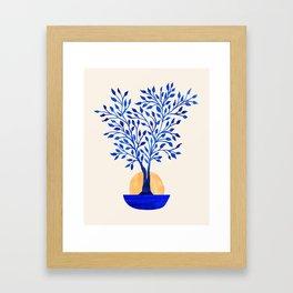 Indigo Ficus Sunrise Framed Art Print