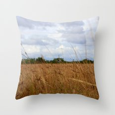 Lost...And I Want To Be Throw Pillow