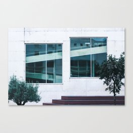 Find The Reflection Canvas Print