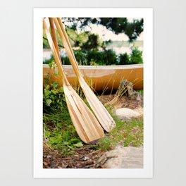 Canoe Paddles Boundary Waters Art Print
