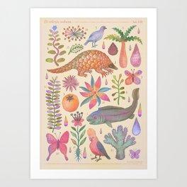Et coloris natura VIII Art Print