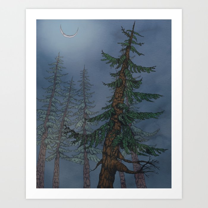 Forest Moonlight Art Print