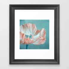 sweet poppy  Framed Art Print