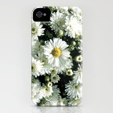 Daisy Dandy iPhone (4, 4s) Slim Case