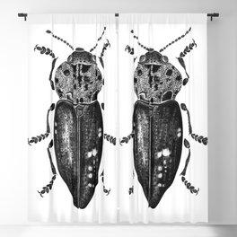 Beetle 11 Blackout Curtain