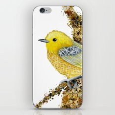 Yellow Warbler Tilly iPhone & iPod Skin