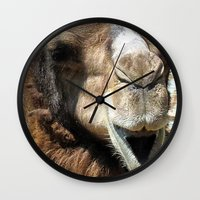 camel Wall Clocks featuring camel by Laura Grove