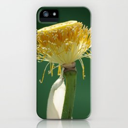 The Last Beauty iPhone Case