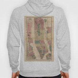 Map of New York and Vicinity (1867) Hoody
