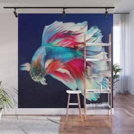 Betta Fish Wall Mural