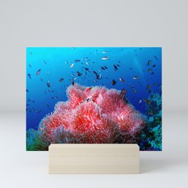 Tropical Sea Life Pink Glowing Anemone Coral Mini Art Print