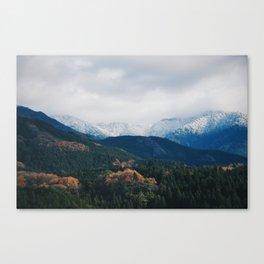 Layers @ Japan Canvas Print