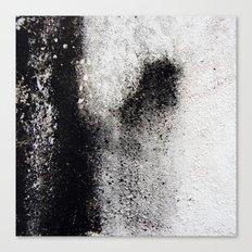 Negro sobre Blanco Canvas Print