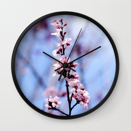Signs of Spring 1 Wall Clock