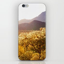 Organ Pipe National Monument #1 iPhone Skin