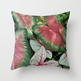 Red and green caladium leaves Throw Pillow