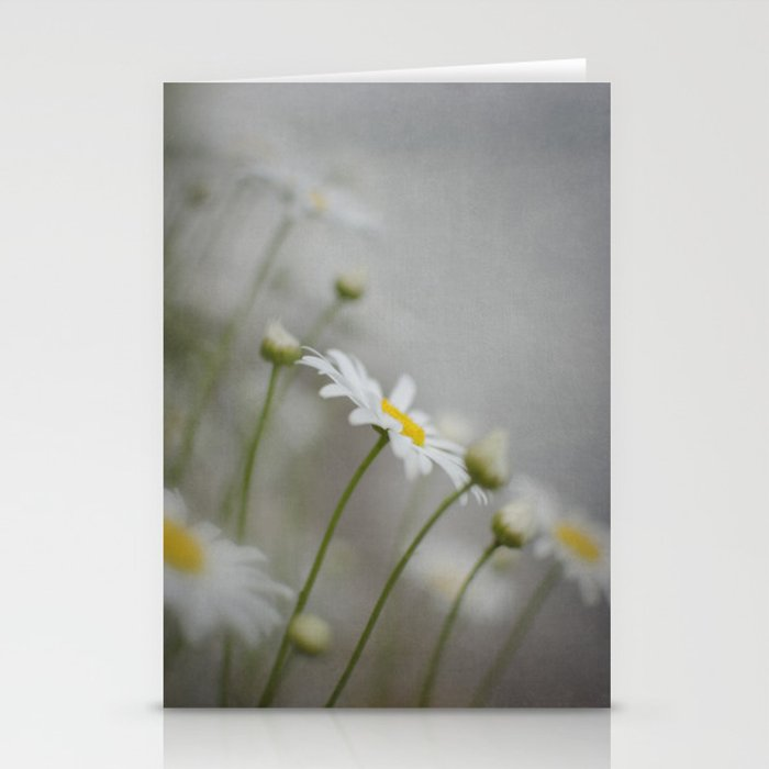 Daises  Stationery Cards
